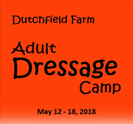 Dutchfield Farm Adult Dressage Camp 2018