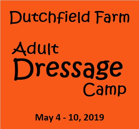 Dutchfield Farm Adult Dressage Camp 2019