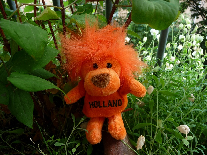 Hup-Holland-Hup