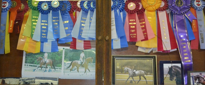 Dutchfield Farm Ribbons on display